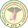 Perioperative and Critical Care Transesophageal Echocardiography, PGIMER